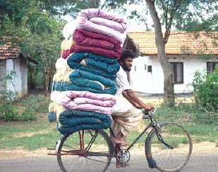 Bicycle carry1.jpg