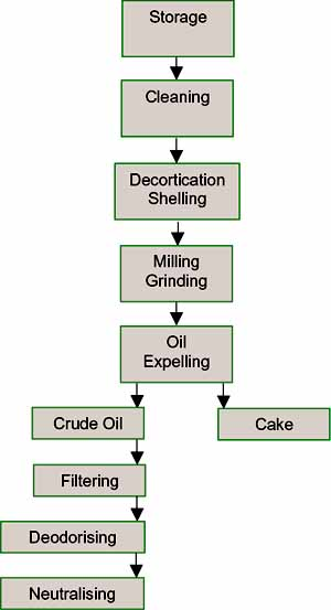SmallScale Oil Processing 2.jpg